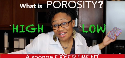 What Exactly Is Hair Porosity? And How To Manage It...